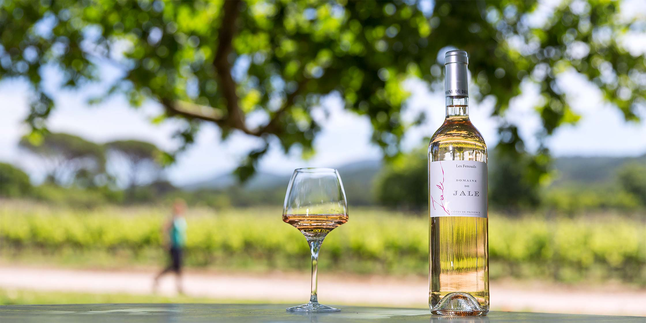 Top 30 Pink wines of Provence
